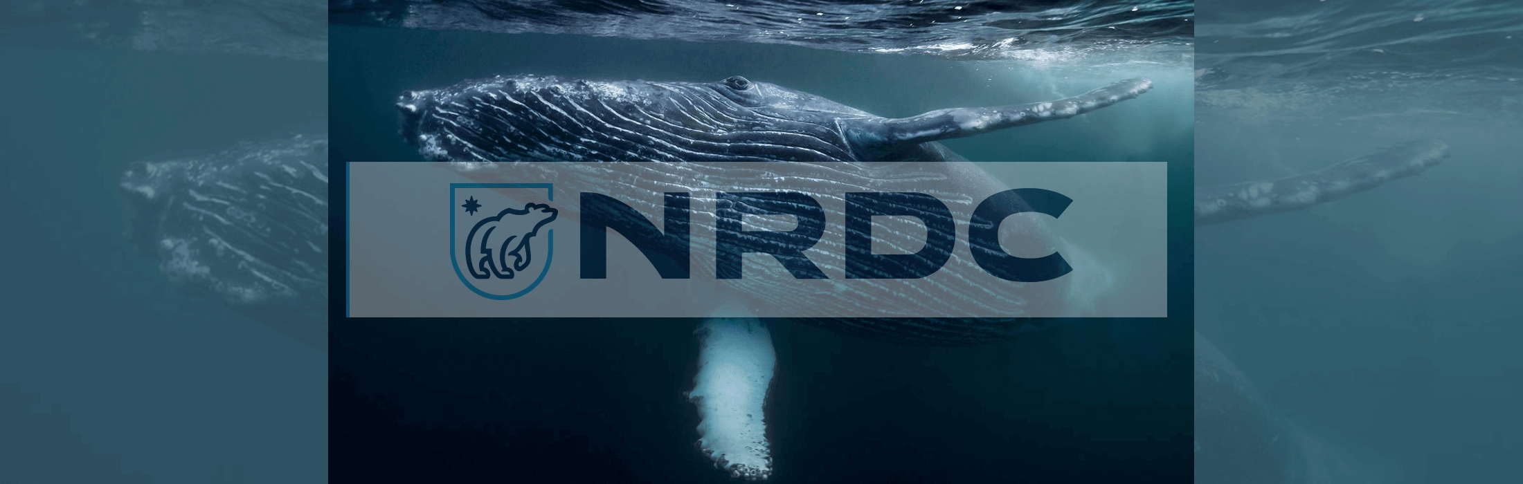 NRDC in the News – Weekly Highlights: Week of May 29, 2017